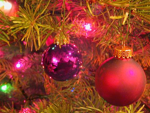 http://gracemagazine.files.wordpress.com/2007/12/christmas-tree480.jpg