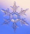 snowflake-100